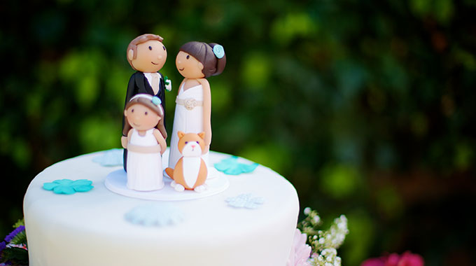 Wedding cake toppers lovingly handmade in dublin ireland junglespirit Choice Image